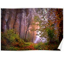 Fog On The Willamette River Poster
