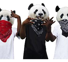 Panda Possé by dijinn