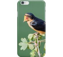 Tweet! iPhone Case/Skin