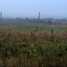 Foggy morning mood in autumn by Antanas