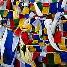 The Buddhist Flag‎ by RajeevKashyap