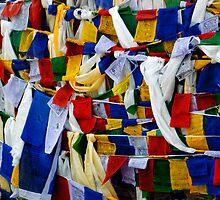 The Buddhist Flag by RajeevKashyap