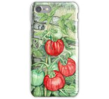Tomato Plant iPhone Case/Skin
