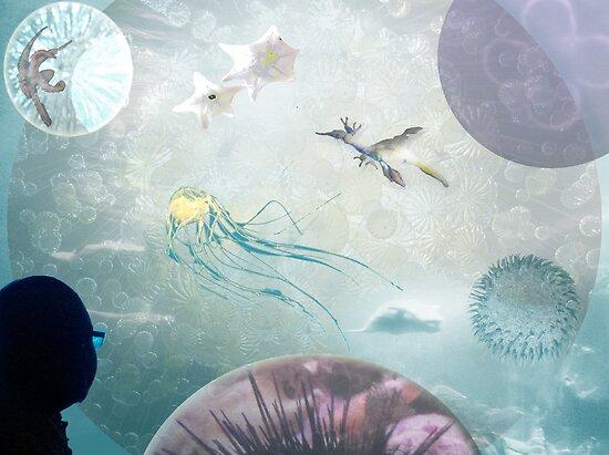 Aquarium in the Night Sky by Jordan Selha
