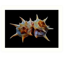 Fibonacci's Wild Fractal Prickly Sea Flowers Art Print