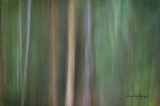 Symphony in green 3 by Yannik Hay