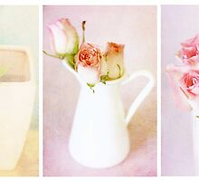 Roses Triptych by Nicola  Pearson