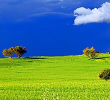 Green Acres  by EOS20