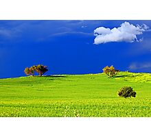 Green Acres  Photographic Print