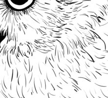 Owl hand drawn Sticker