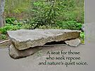 A Bench For Those Who Seek Repose by MotherNature