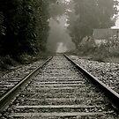 Railroad Tracks in PA by Jennifer P. Zduniak