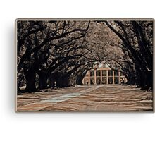Oak Alley: Sepia Canvas Print