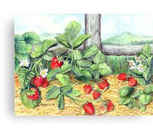Strawberries and Rail Fence Canvas Print