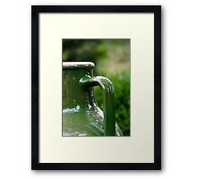 Green Jug Framed Print