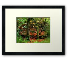 Out in the countryside Framed Print