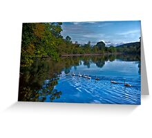 Swanny River Greeting Card
