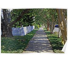 Tree Lined Street Poster