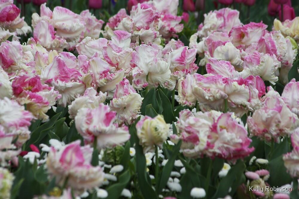 Pink Curls - Floriade 2011 by Kelly Robinson