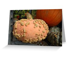 Decorated Squash Greeting Card