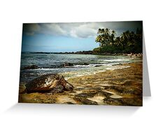 North Shore Turtle Greeting Card