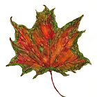 Watercolor Maple Autumn Leaf by ThimbleSparrow