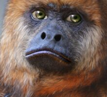 Howler monkey Sticker