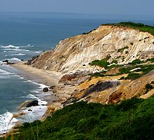 Gay Head Cliffs by Nancy Richard