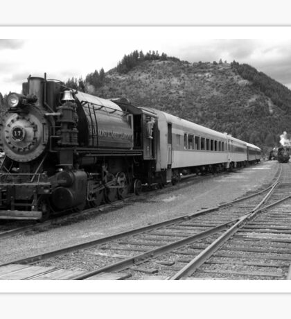 Mt. Rainier Scenic Railroad 17 and Friends Sticker