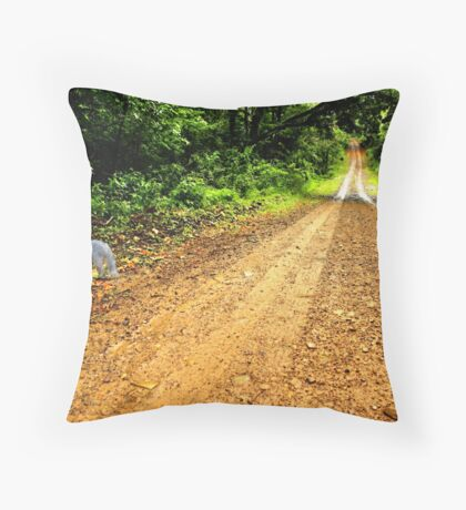 Somethings In The Air.... Throw Pillow