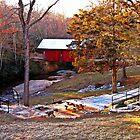 *South Carolina's Only Covered Bridge* by Darlene Lankford Honeycutt