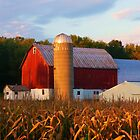 Autumn Farm in Wisconsin by Mary Kaderabek-Aleckson