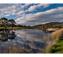 Puddleduck Winery Photographic Print