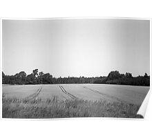 Lauki, Tukuma novadā | Field, Tukuma district Poster