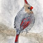 Watercolor cardinal by ThimbleSparrow