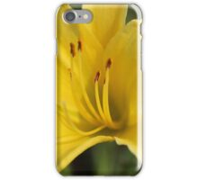The perfect thing of nature iPhone Case/Skin