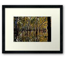 The Black Swamp - Fencing  Framed Print