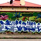 Newtown by Janie. D