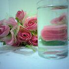Aquatic Roses..... by True Cinema Movement