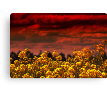 And the sky wept blood to feed the lustful earth Canvas Print