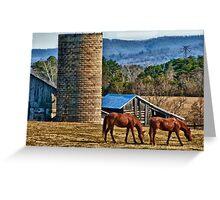 Virginia Horse Farm Greeting Card