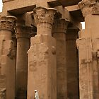 Temple of Kom Ombo, Egypt by Justine Chesterman