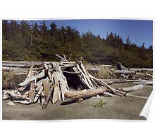 Driftwood Castle Poster