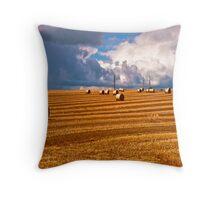 Kinsale golden hour Throw Pillow