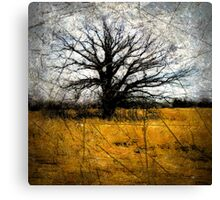 Desolate III Canvas Print