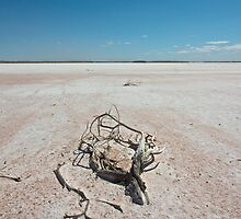 Lake Amadeus, Central Australia by seany99