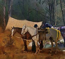 Camp site in NSW Australia by Gerard Mignot