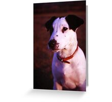 Puppy Patch Greeting Card