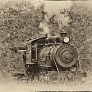 1900s steam locomotive by Bryan Peterson