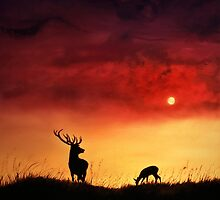 Stag and Deer at Sunset by Linda Woodward
